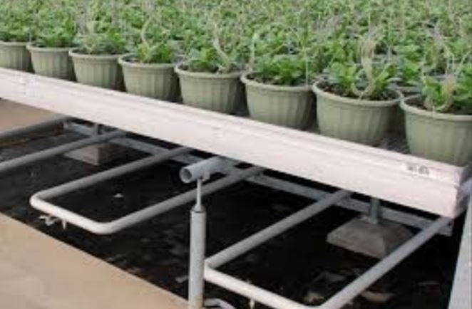 Greenhouse Hot Water-Steam Heater