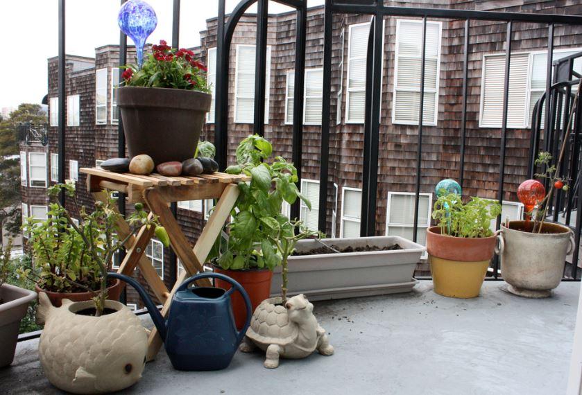 garden in a flat