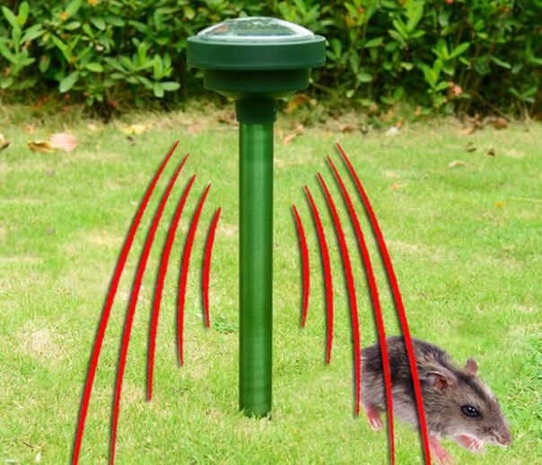 keep rodents away with Solar Ultra Sound