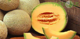 Health Benefits Of Cantaloupe Plant